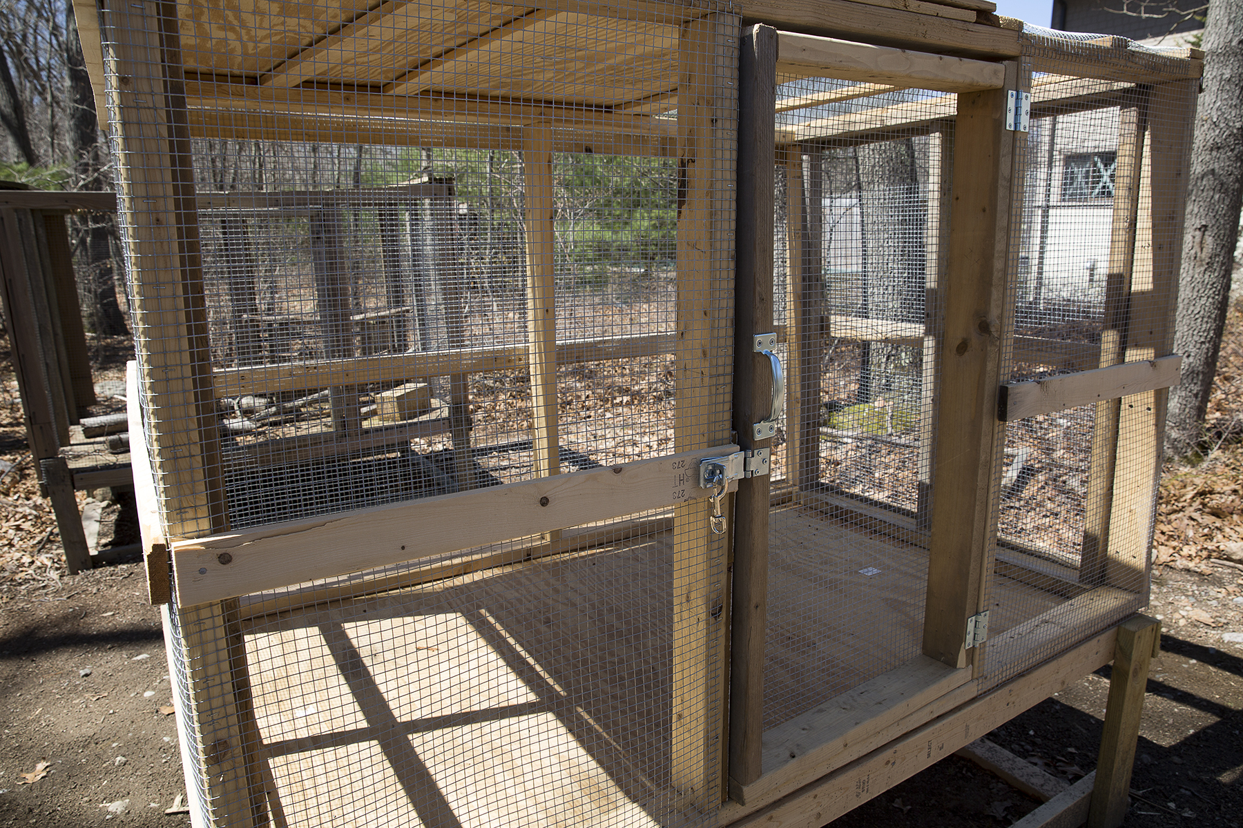 Eagle Scout Aidan Builds Soft Release Caging for Mammals!!