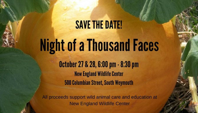 SAVE THE DATE: Night Of A Thousand Faces 2017!