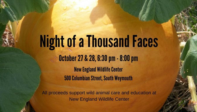 Come to Night Of A Thousand Faces 2017!